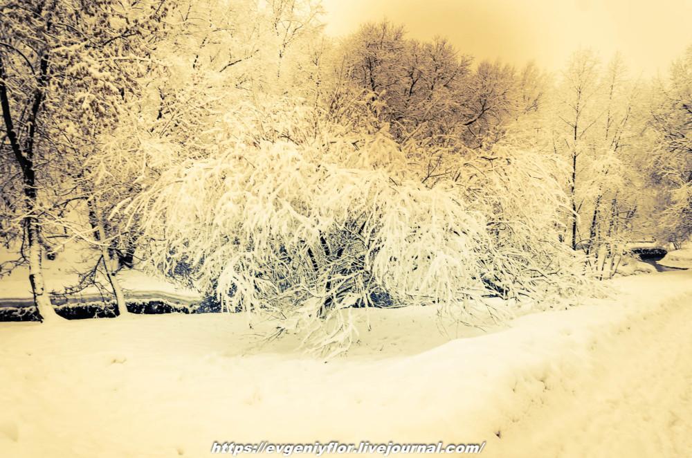 冬のLikhoborkaまたは黄河Altufana 13 02 - 2019 Среда !...2019-02-136541.jpg
