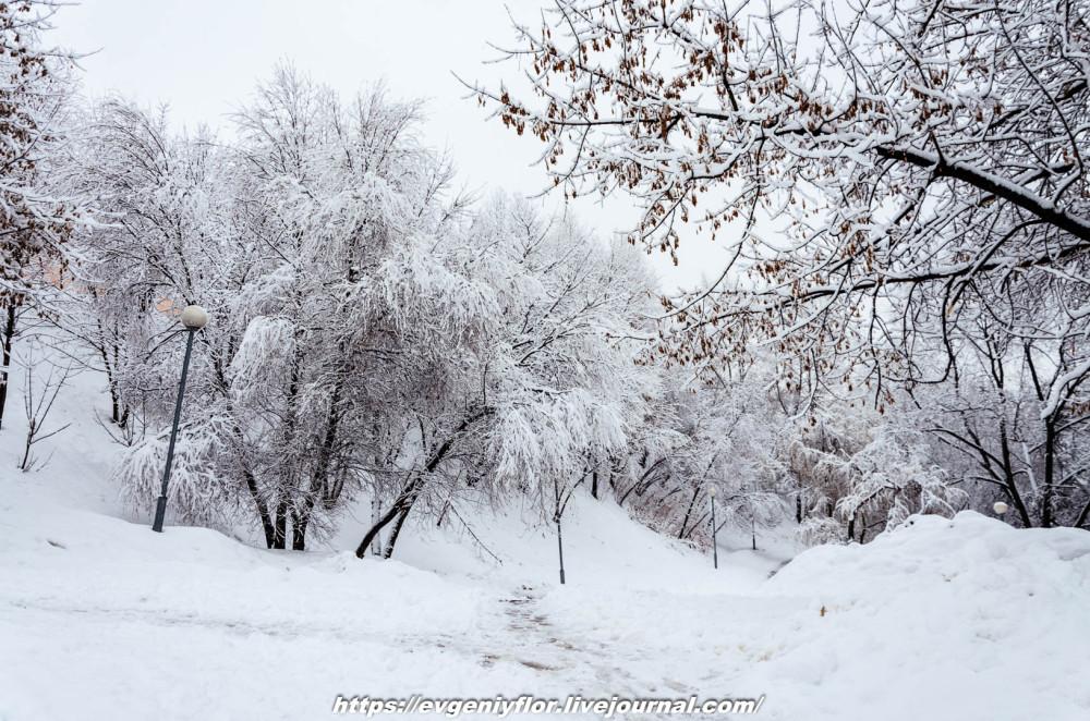 冬のLikhoborkaまたは黄河Altufana 13 02 - 2019 Среда !...2019-02-136542.jpg