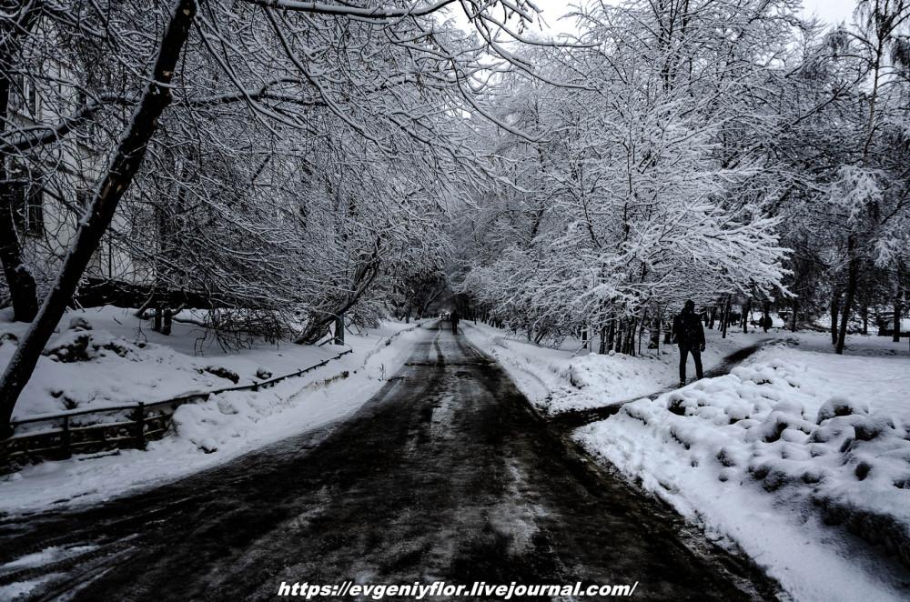 冬のLikhoborkaまたは黄河Altufana 13 02 - 2019 Среда !...2019-02-136557.jpg