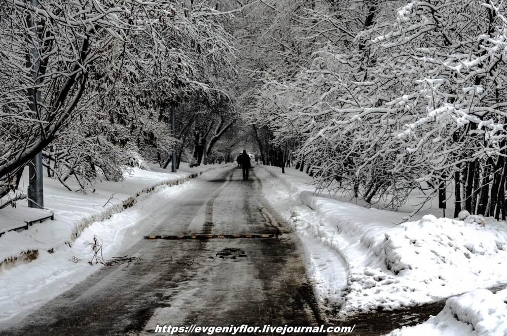 冬のLikhoborkaまたは黄河Altufana 13 02 - 2019 Среда !...2019-02-136558.jpg