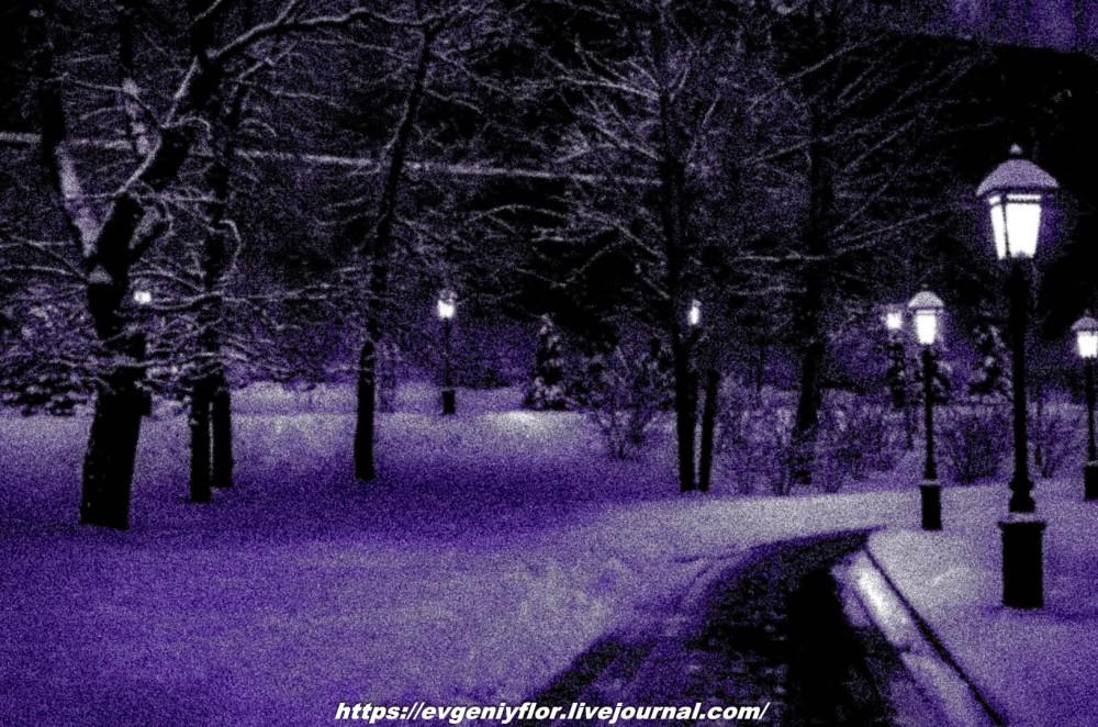 Вечерняя прогулка после снегопада    13 02 - 2019 Среда !Новая папка (2)6577.jpg