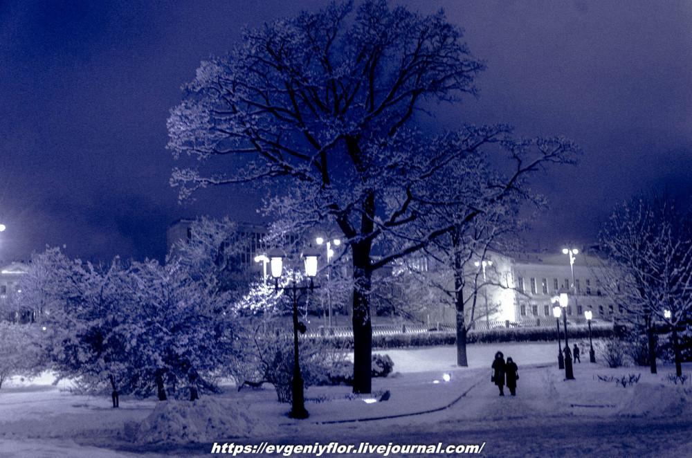 Вечерняя прогулка после снегопада    13 02 - 2019 Среда !Новая папка (2)6605.jpg