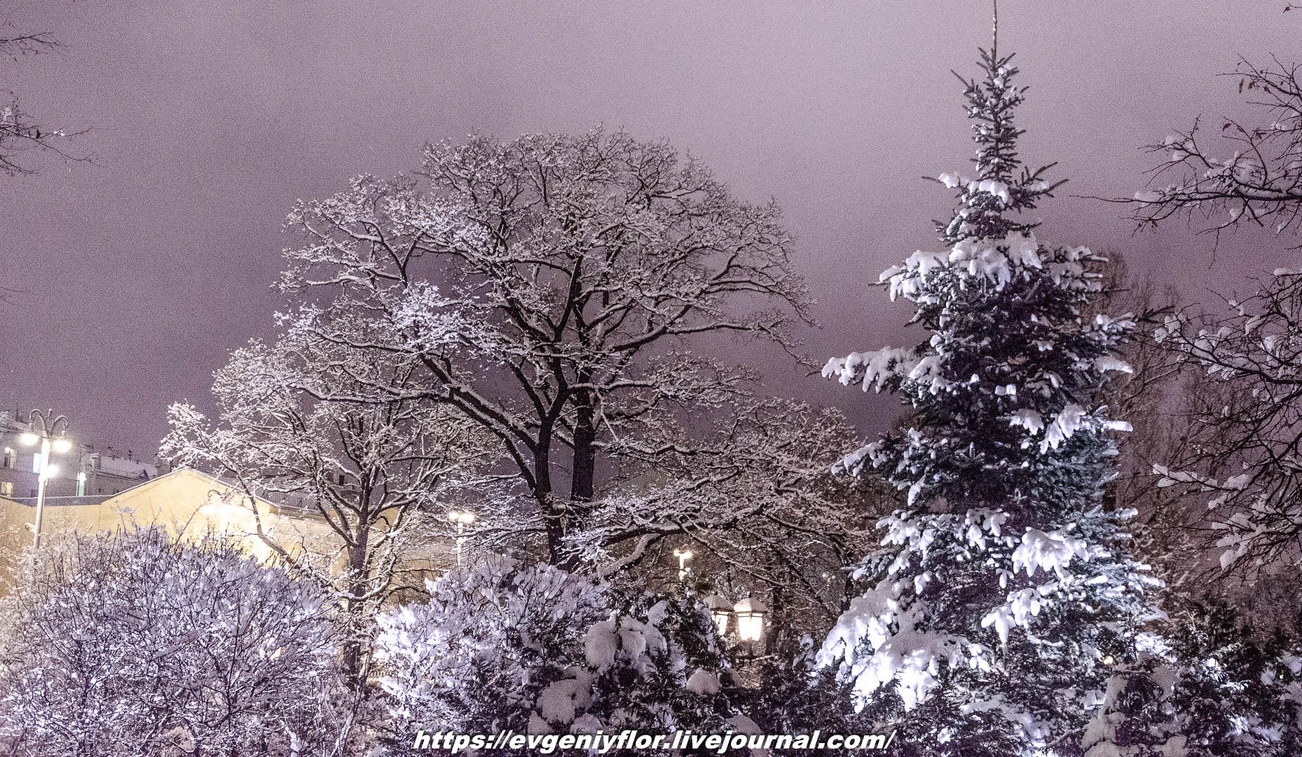 Вечерняя прогулка после снегопада    13 02 - 2019 Среда !Новая папка (2)6618.jpg