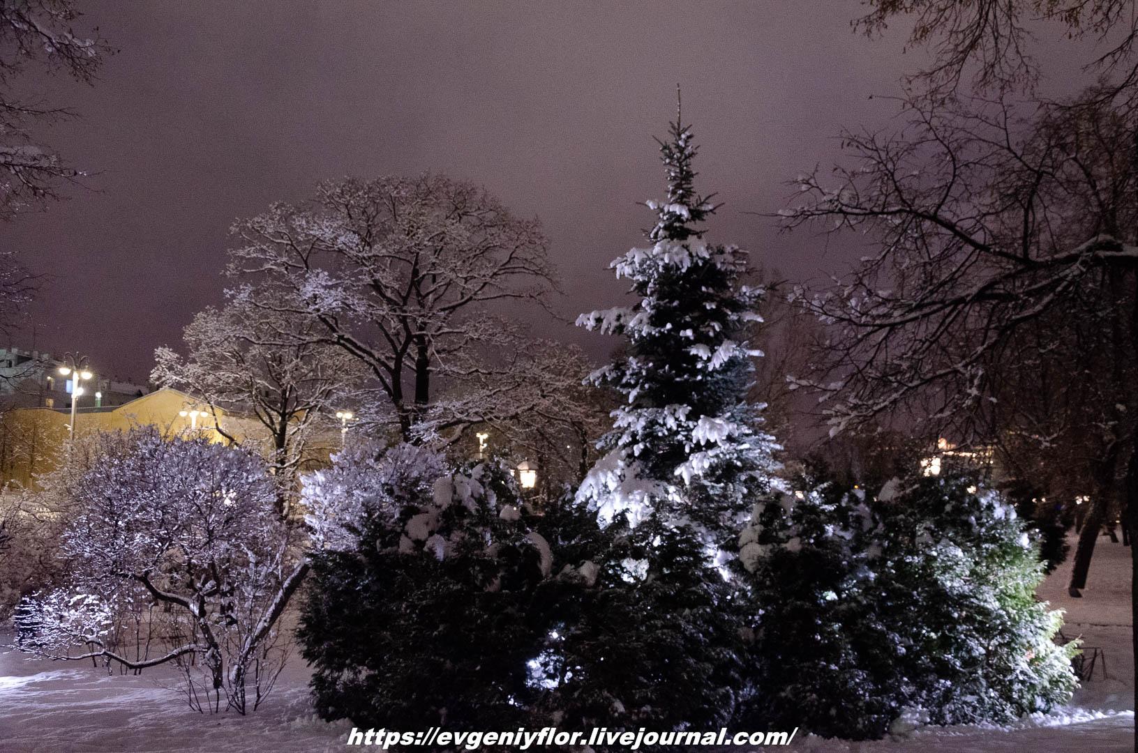 Вечерняя прогулка после снегопада    13 02 - 2019 Среда !Новая папка (2)6619.jpg