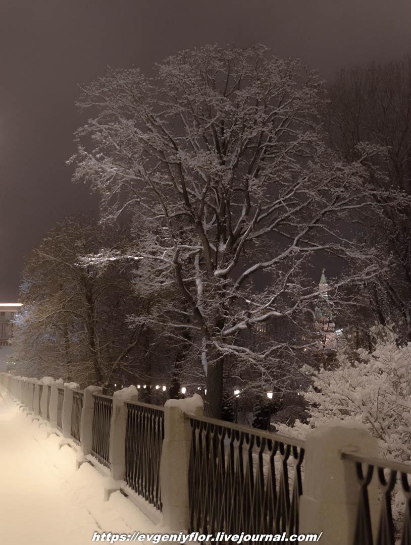 Вечерняя прогулка после снегопада    13 02 - 2019 Среда !Новая папка (2)6626.jpg