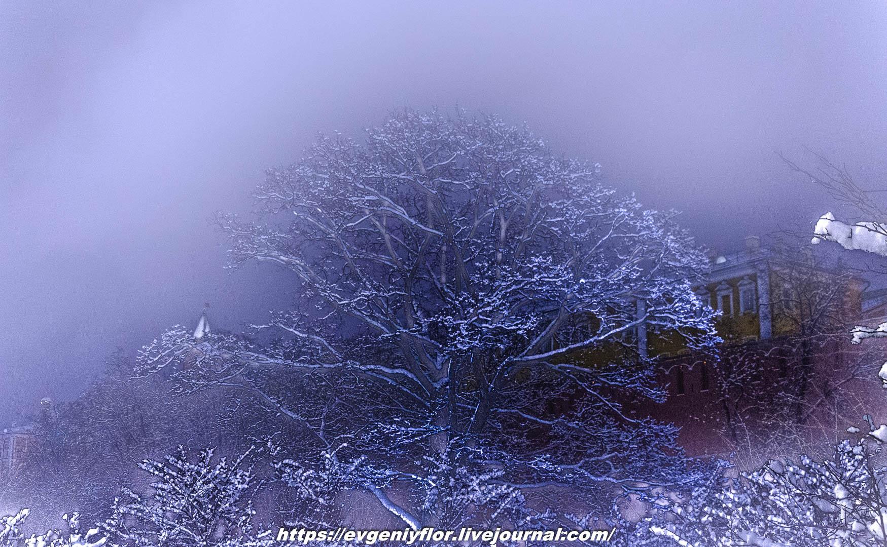 Вечерняя прогулка после снегопада    13 02 - 2019 Среда !Новая папка (2)6631.jpg