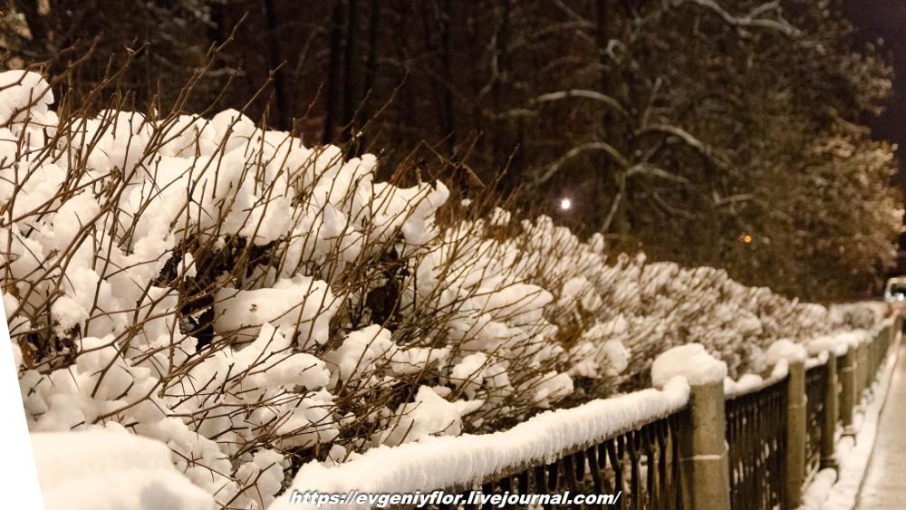 Вечерняя прогулка после снегопада    13 02 - 2019 Среда !Новая папка (2)6645.jpg
