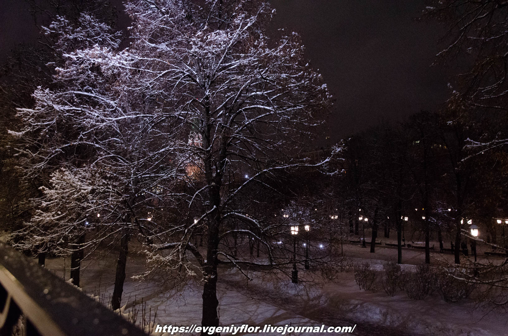 Вечерняя прогулка после снегопада    13 02 - 2019 Среда !Новая папка (2)6780.jpg