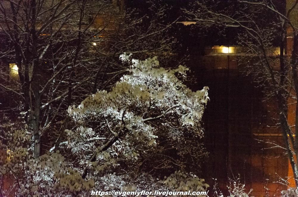 Вечерняя прогулка после снегопада    13 02 - 2019 Среда !Новая папка (2)6788.jpg