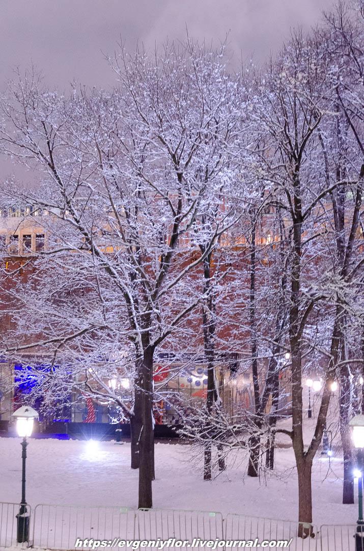 Вечерняя прогулка после снегопада    13 02 - 2019 Среда !Новая папка (2)6801.jpg