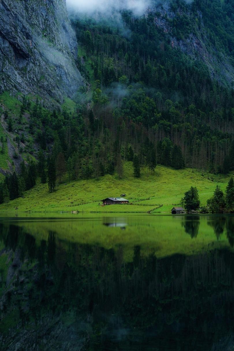 Природа-красивые-картинки-лес-фото-1682901