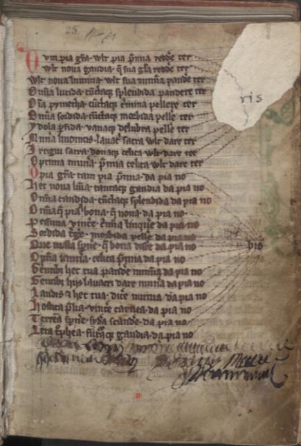 Codex Zamoscianus /Chronicon Livoniae, liber I–XXIII