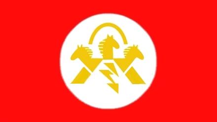 Флаг России-8