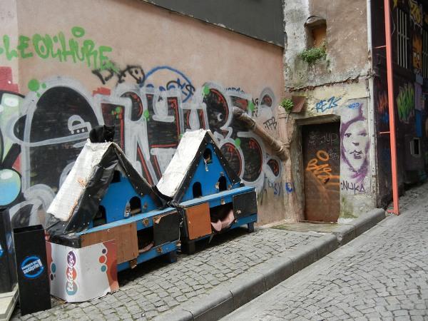 003 muni istanbul-112-cat-house s