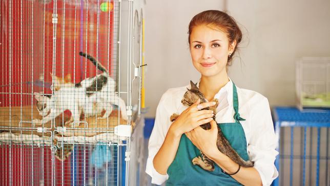 1 animal-shelter-workerLEAD