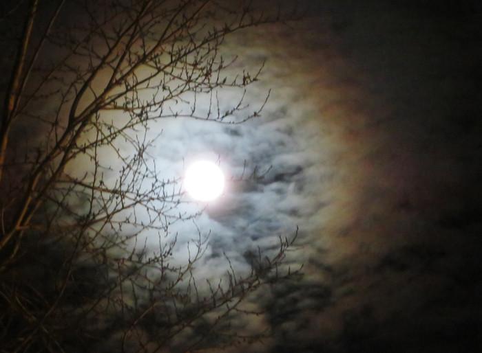 луна.jpg