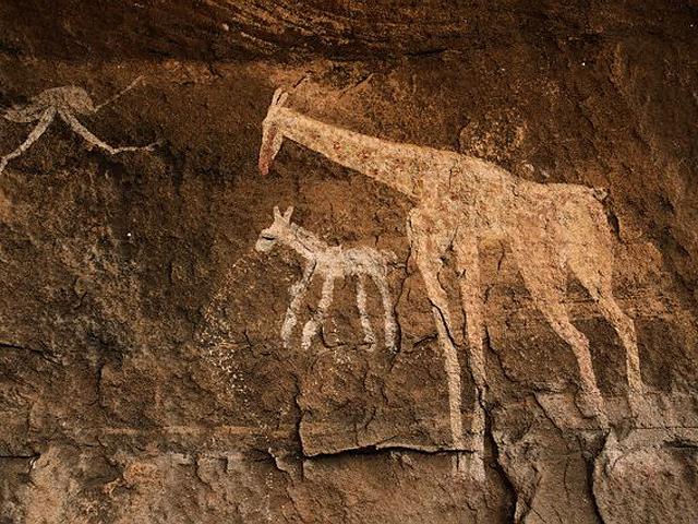 cave-animal_10_20130218_1693547321