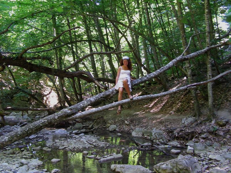 в роли лесной феи