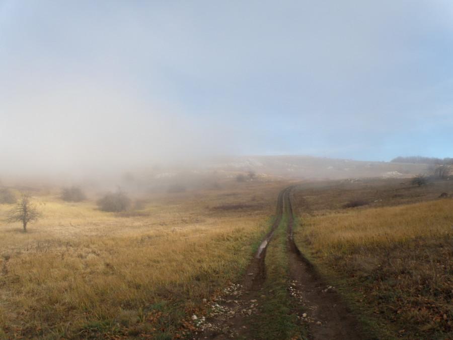 2 дорога в тумане
