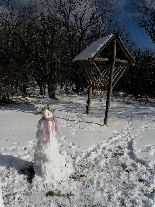 снеговик и кормушка