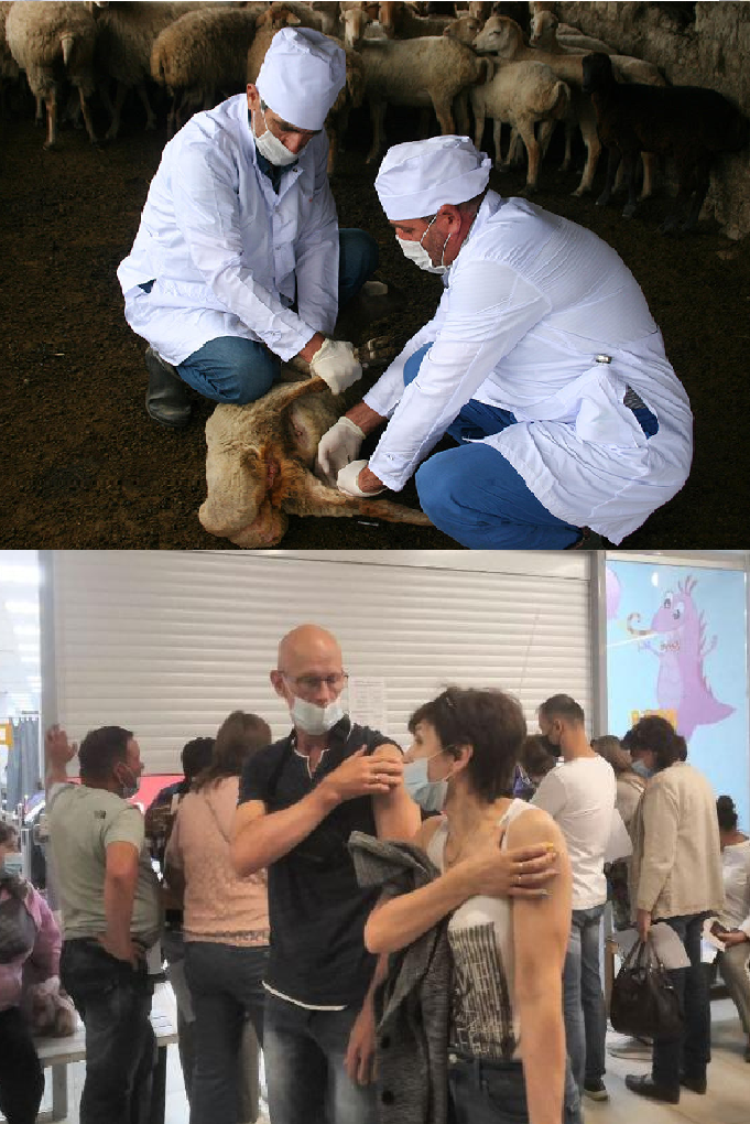 Медицина от ветеринарии отличается тем, что у человека всегда есть выбор.
