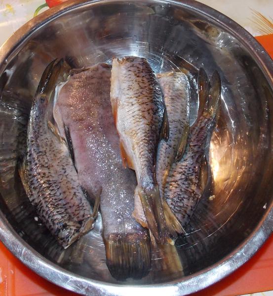 рыба11
