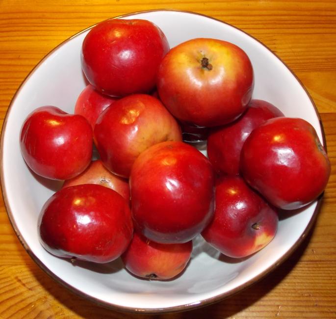 яблоки11