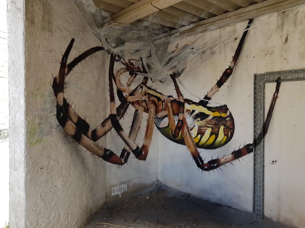 orbit-spider.jpg
