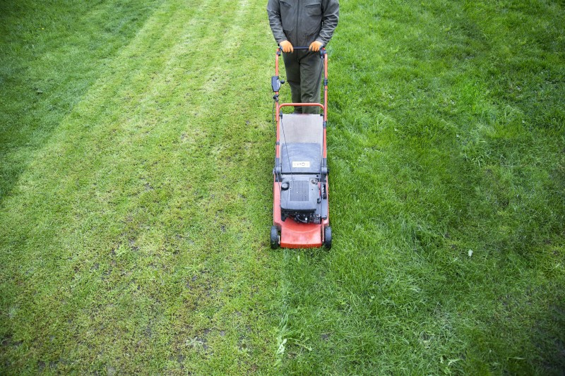 Key Things to Consider Before You Hire the Lawn Care Company You Think Is the Best