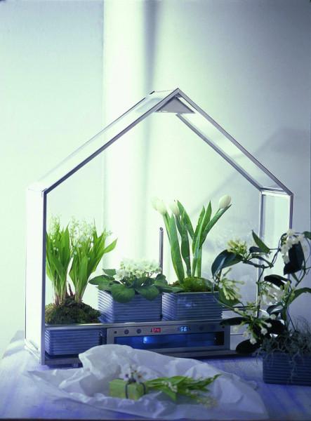 Тепличка для комнатных растений