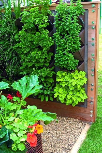 Гаджеты для сада и огорода