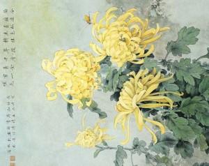 chrysanthemum-02-300x238