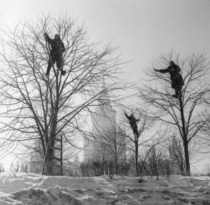 Бабушки прилетели В.Ахломов 1960