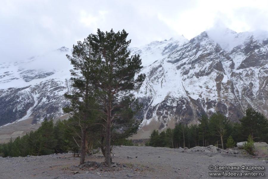 prielbruse-trekking-v-okrestnostyah-podem-ot-polyany-azau-do-priyuta-11-ti-vyhod-k-skalam-pastuhova-02