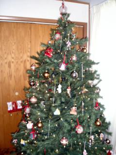 2005 Tree