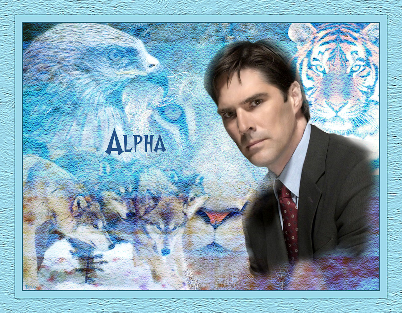 criminal-minds-04-alpha2