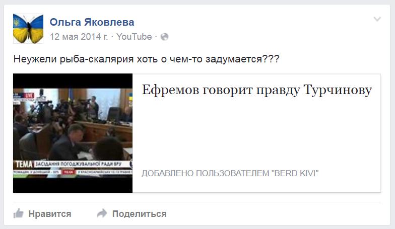 Ольга Скорик о турчинове