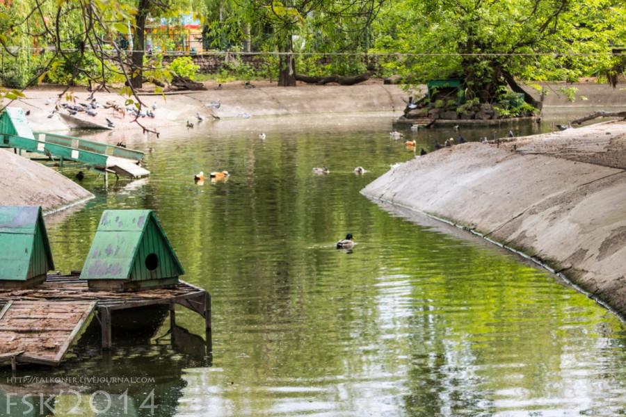 Mykoiv_zoopark_37