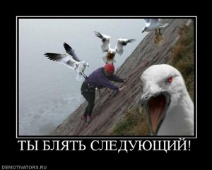 822832_tyi-blyat-sleduyuschij