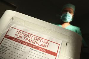 Germany+Debates+Organ+Transplant+System+jzS7dHgWCSVl
