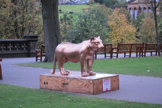 Золотая львица