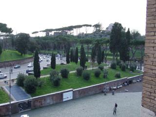 Римские сосны