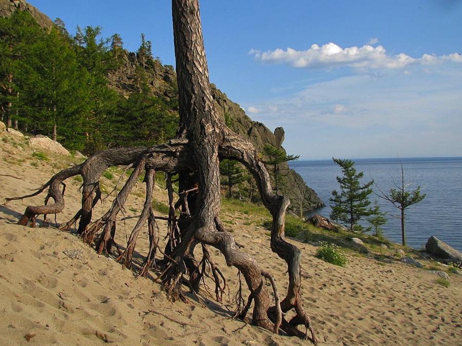 бухта песчаная