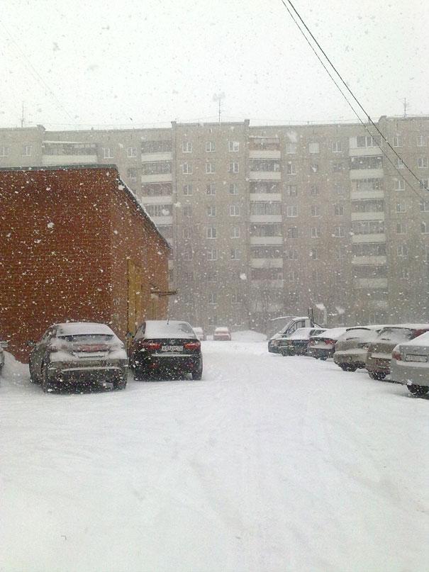 снег-один