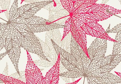 листья-три
