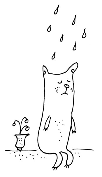 кот-под-дождем