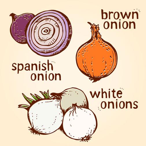 onion-color-set