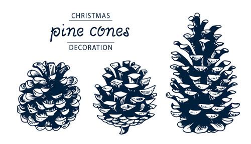 2008-pine-cones