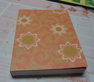journal-before