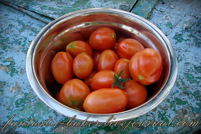 MyFirstTomatoes02
